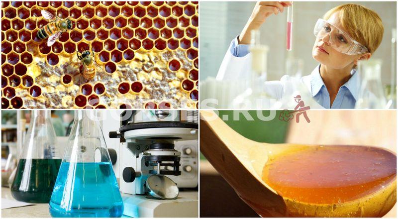 анализ качества меда в