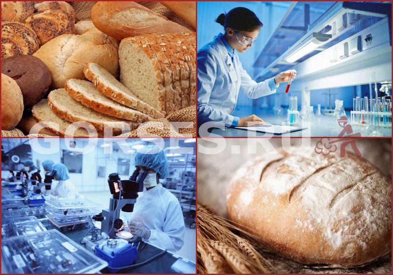 анализ хлеба