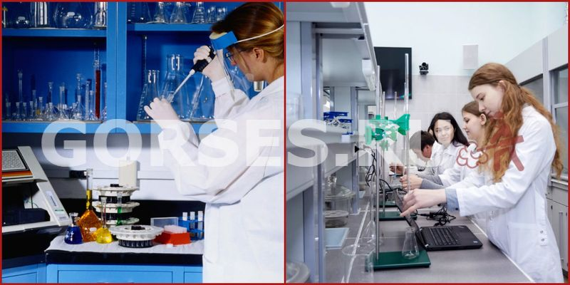 Химический и органолептический анализ Балашиха