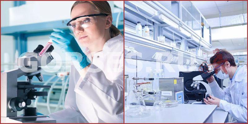 Микробиологический анализ Бронницы