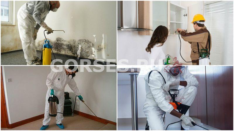 санитарная обработка квартиры