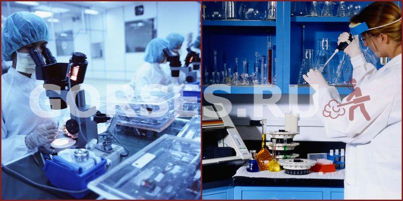 Химический и органолептический анализ Долгопрудный