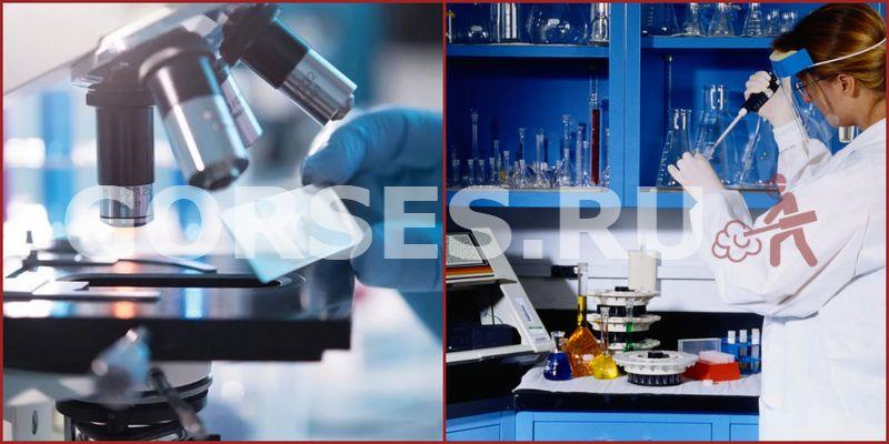 Химический и органолептический анализ Голицыно