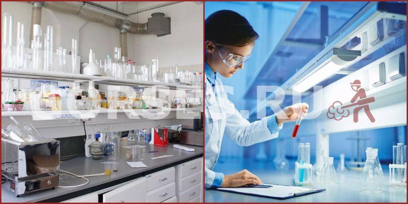 Микробиологический анализ Истра