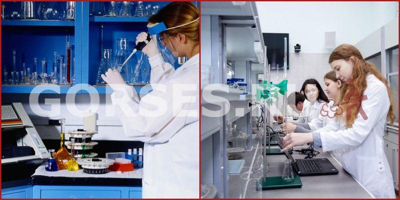 Химический и органолептический анализ Коломна