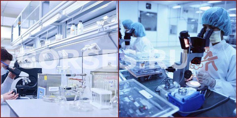 Химический и органолептический анализ Краснознаменск