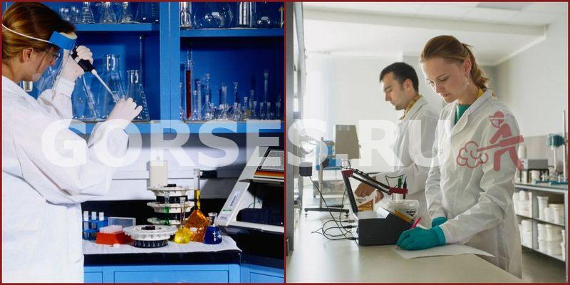 Микробиологический анализ Краснознаменск