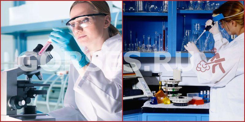 Химический и органолептический анализ Ликино-Дулёво