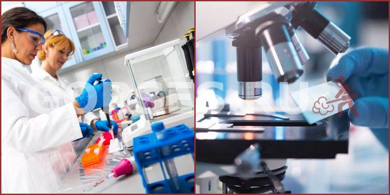 Микробиологический анализ Михнево