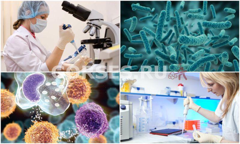 Микробиологические исследования воды
