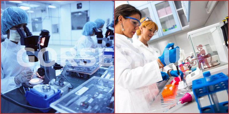 Химический и органолептический анализ Мытищи