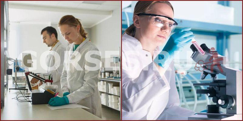 Химический и органолептический анализ Озёры