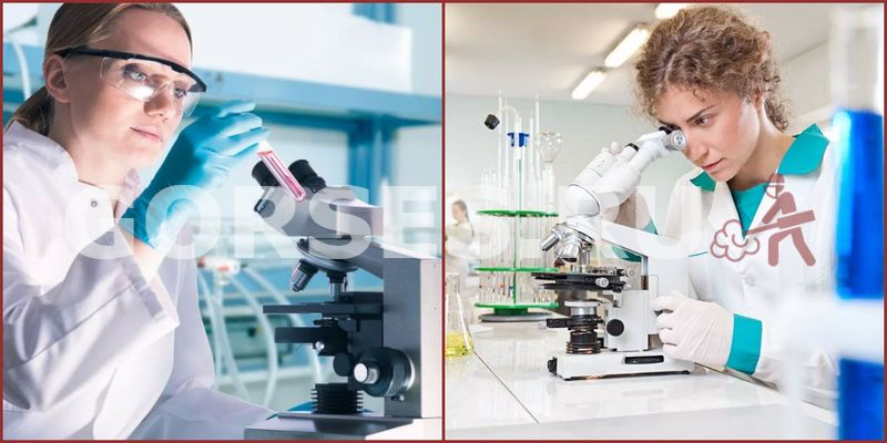 Микробиологический анализ Пересвет