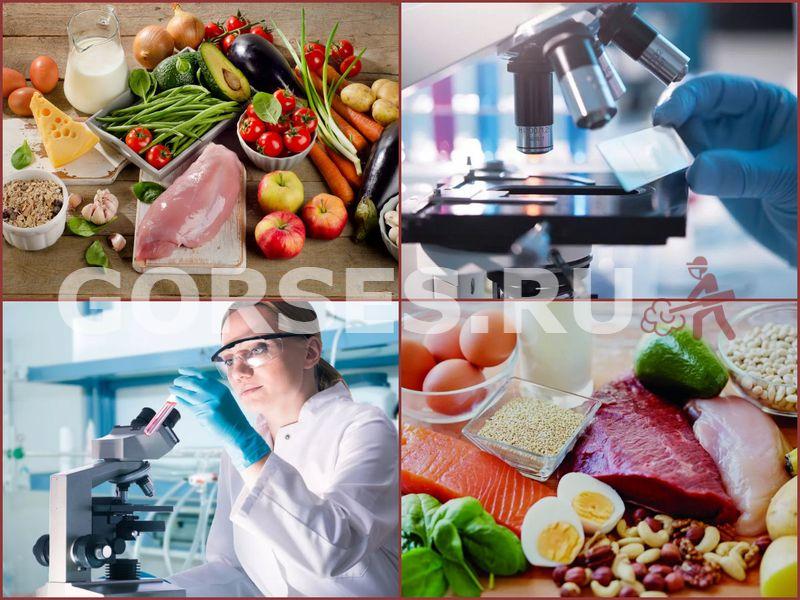 экспертиза пищевых продуктов