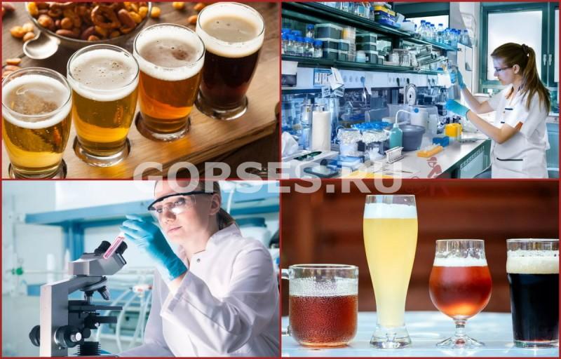 анализ пива