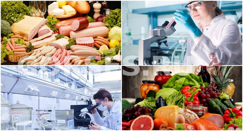 лаборатория проверки качества продуктов питания