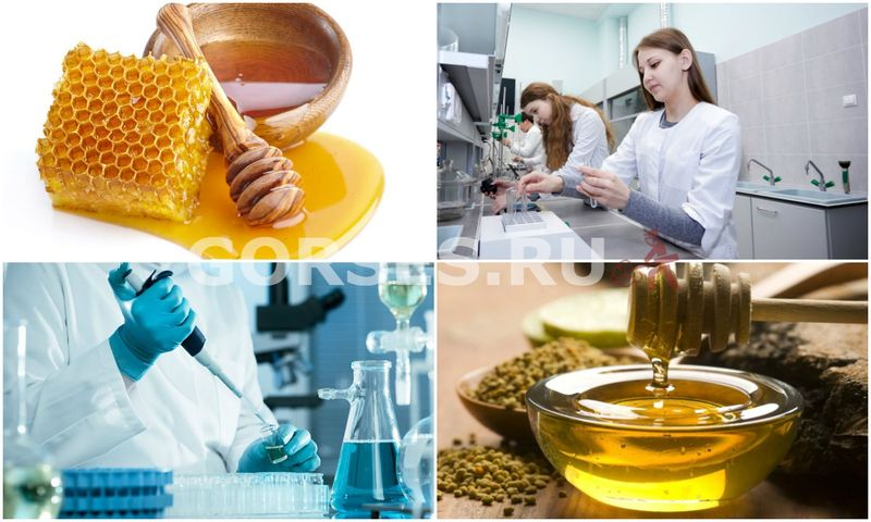 Проверка качества меда