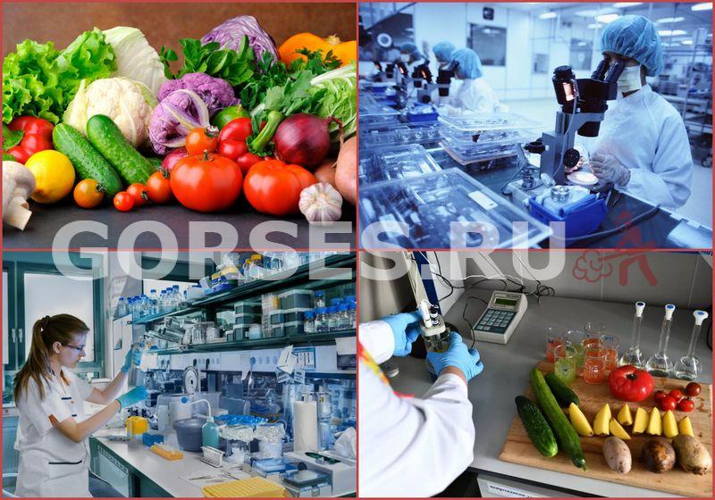 проверка овощей на нитраты