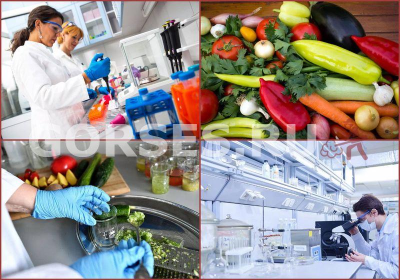 анализ овощей