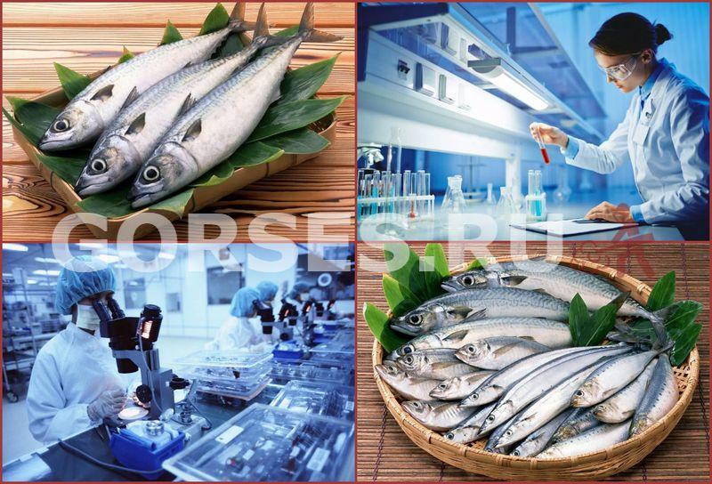 экспертиза рыбы