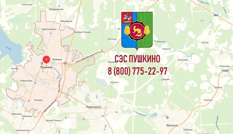 СЭС города Пушкино