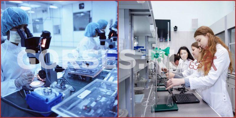 Химический и органолептический анализ Раменское