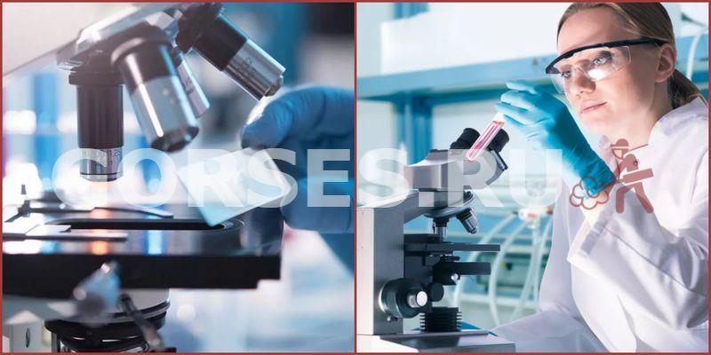 Микробиологический анализ Рошаль