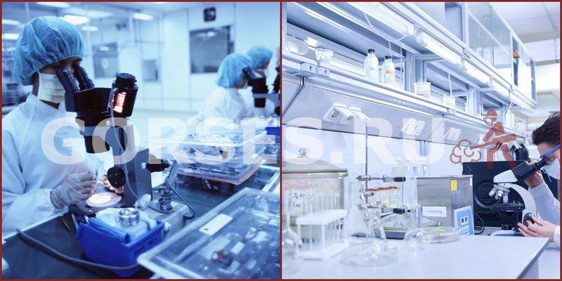 Микробиологический анализ Селятино