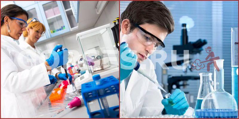 Микробиологический анализ Шаховская