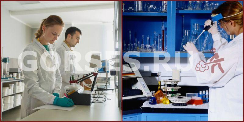 Химический и органолептический анализ Щёлково