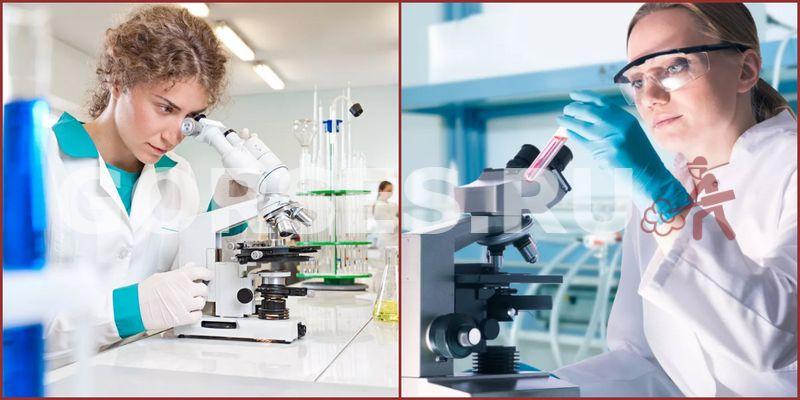 Химический и органолептический анализ Ступино