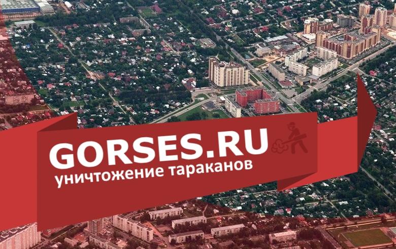 Уничтожение тараканов в Домодедово