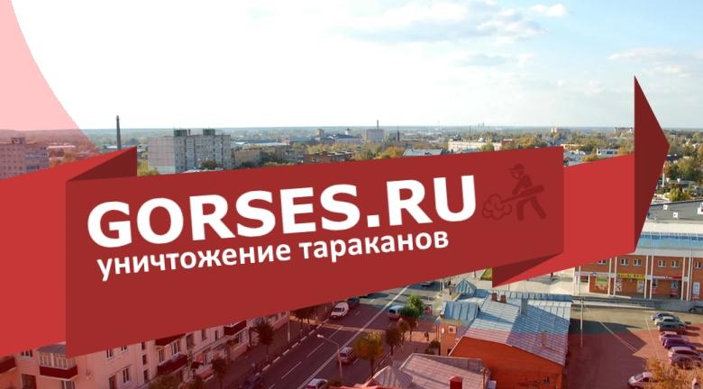 Уничтожение тараканов в Егорьевске