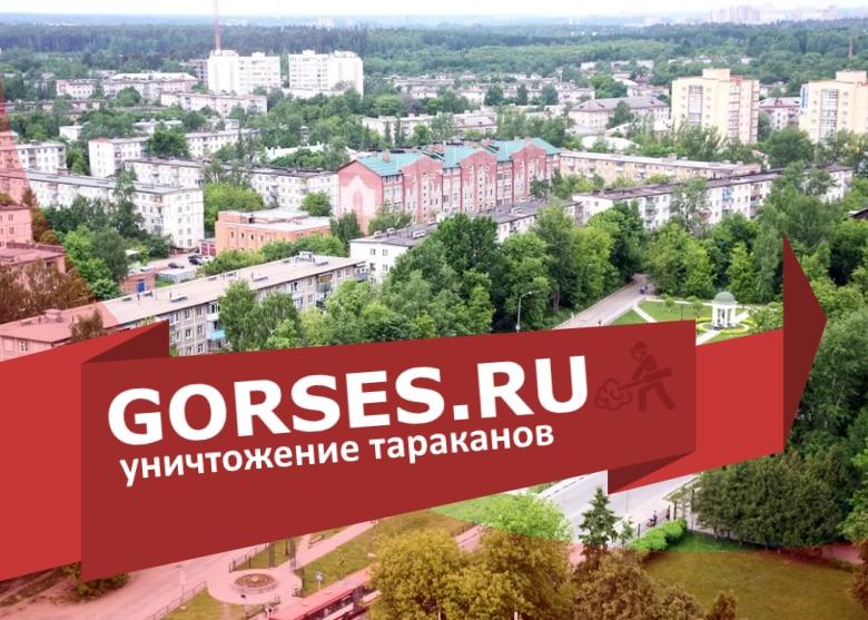 Уничтожение тараканов в Ивантеевке