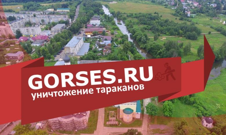 Уничтожение тараканов в Киржаче