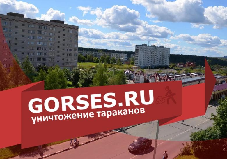 Уничтожение тараканов в Краснозаводске
