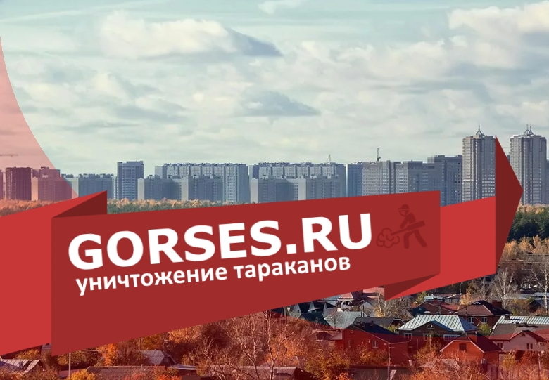 Уничтожение тараканов в Подольске