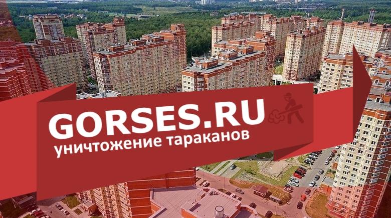 Уничтожение тараканов в поселении Московский
