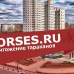 Уничтожение тараканов в Пушкино