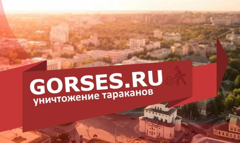 Уничтожение тараканов во Владимире