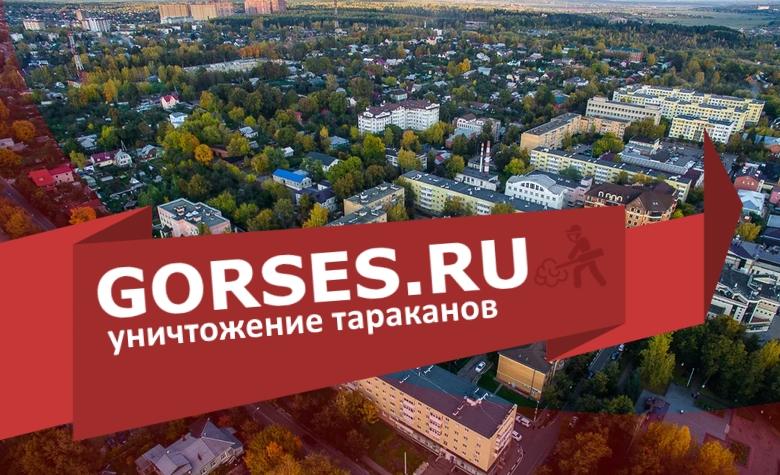 Уничтожение тараканов в Звенигороде