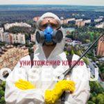 Обработка и уничтожение клопов Черноголовка