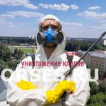 Обработка и уничтожение клопов Дедовск