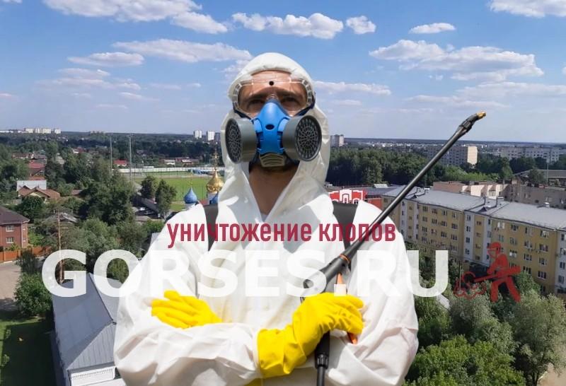уничтожение клопов Дедовск