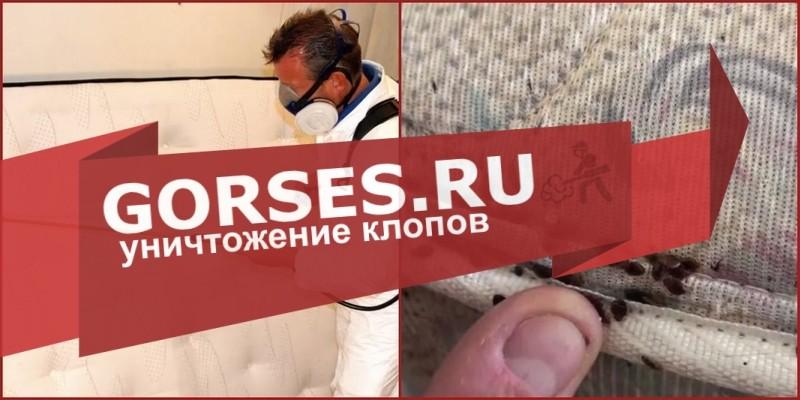 обработка клопов Дедовск