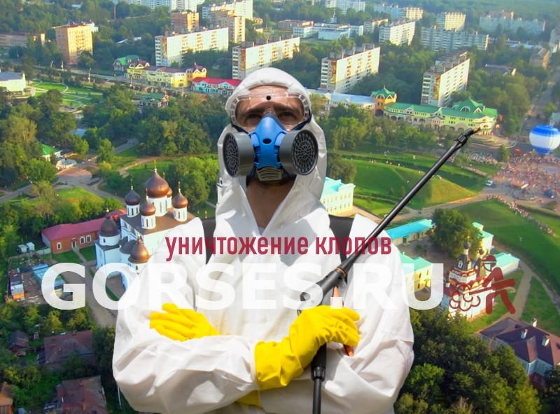 уничтожение клопов Дмитров