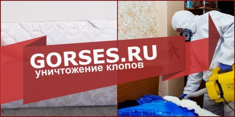обработка клопов Домодедово