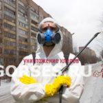 Обработка и уничтожение клопов Климовск