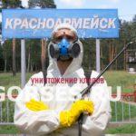 Обработка и уничтожение клопов Красноармейск