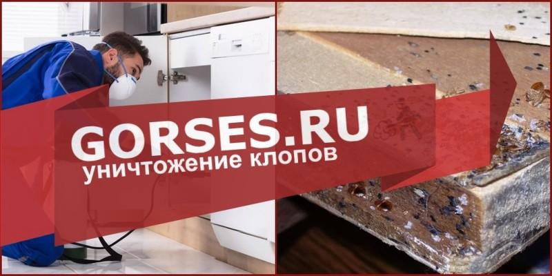 обработка клопов Краснознаменск